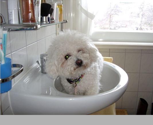 Waschen muss sein