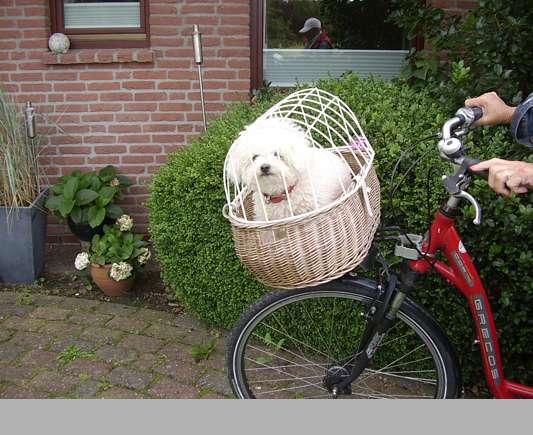 Toll! Ich mache eine Fahrradtour!